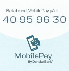 MobilePayPicnr